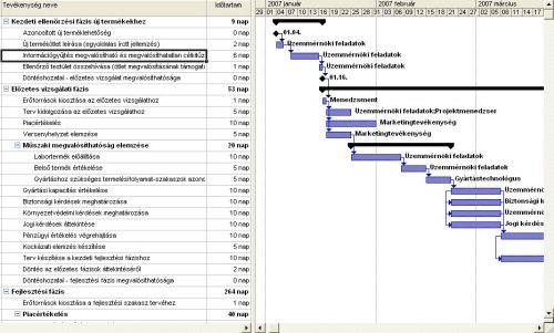 MS Project Gantt Diagram